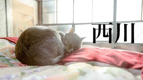 西川の寝具のイメージ画像